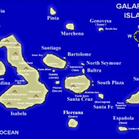 GALAPAGOS ISLANDS – Dive a destination on EVERY diver's bucket list!
