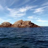 Spend a Day at Julian Rocks in Byron Bay
