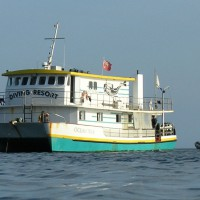 JERVIS BAY – The Cream of Southern NSW Diving Aboard Oceantrek