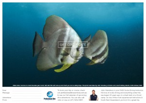 Professional Dive Services - Bat Fish