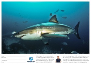 Professional Dive Services - Great White Shark