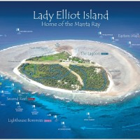 Explore the tranquil waters of Lady Elliot Island aboard the MV Adori