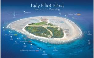 Lady Elliot Dive Sites