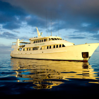 OSPREY REEF- TEMPTATION AWAITS ABOARD THE SPIRIT OF FREEDOM